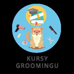 grafika_service_kursy-groomingu-3 Główna