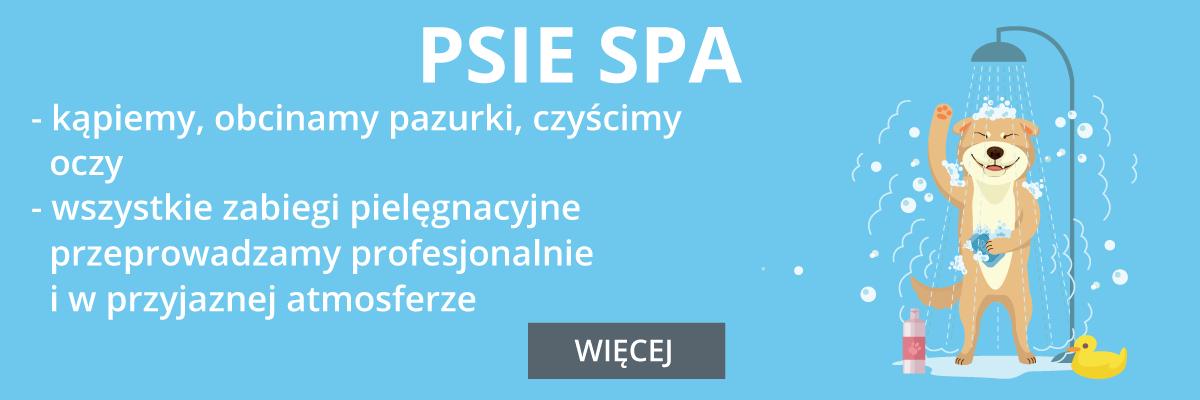 slider-middle-2_400px-1 Główna