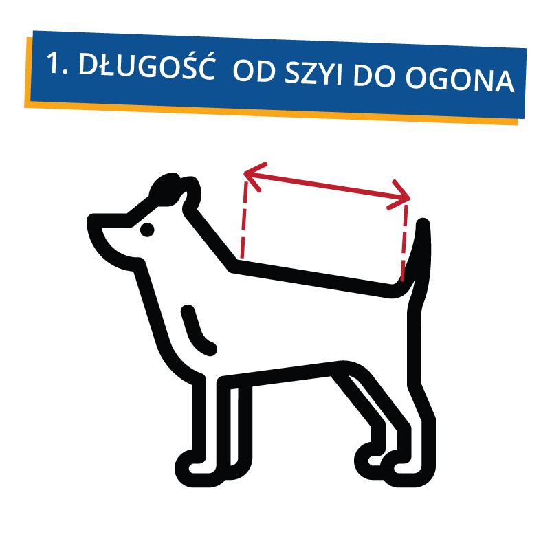 jak_zmierzyc_psa_1 Jak dobrać ubranko dla psa?