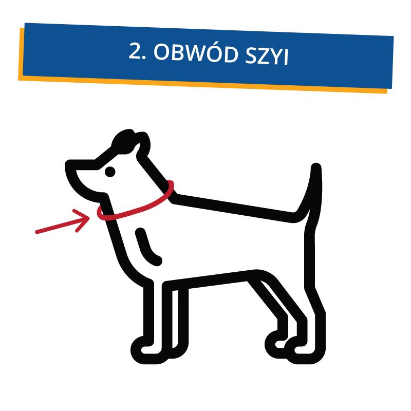 jak_zmierzyc_psa_2 Jak dobrać ubranko dla psa?